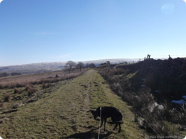 weardale way last week!