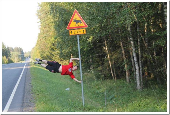 w Finlandii