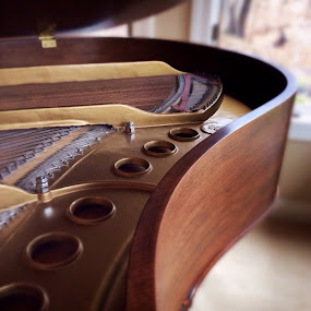 Steinway by Lisa Ehrlich - Artistic Objects Musical Instruments (  )