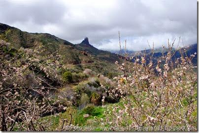 7530 La Goleta-Tejeda(Roque Bentayga)