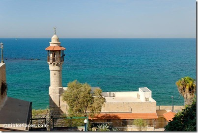 Joppa ocean view with minaret, tb101806997