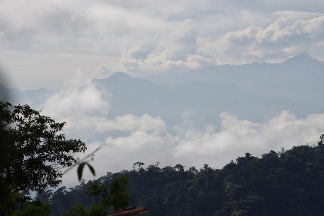 Los Cedros (1400 m) : vue vers le Sud-Est et les Andes. Montagnes de Toisan, Cordillère de La Plata (Imbabura, Équateur), 21 novembre 2013. Photo : J.-M. Gayman