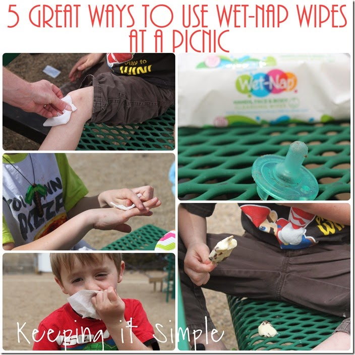 5-great-ways-to-use-wet-nap-wipes-at-a-picnic #showusyourmess (26)