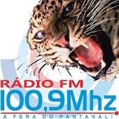 FM 100,9 - A Fera do Pantanal