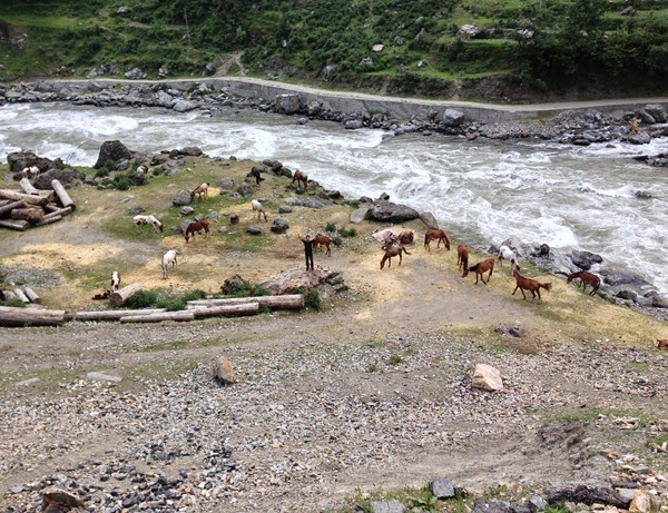 That's me in center!  River Kunhar