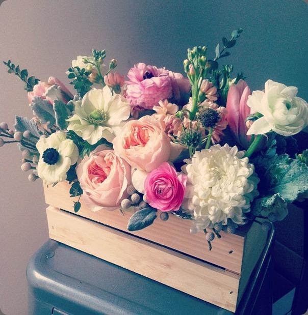 mum 14832_485588468164296_1499392612_n primary petals