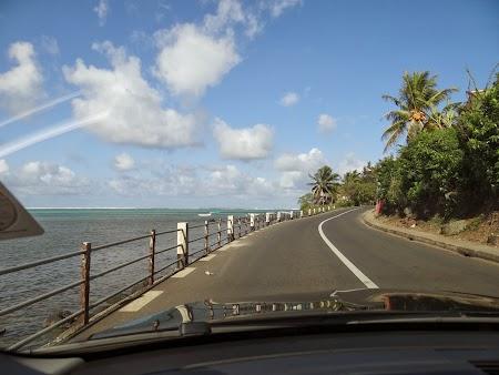 Sosea din Mauritius