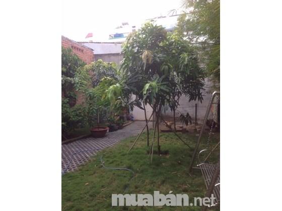 Bán Nhà Cấp 4 Hẻm Đường Lê Vĩnh Hòa Quận Tân Phú 06