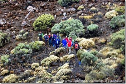 057 Cañadas del Teide
