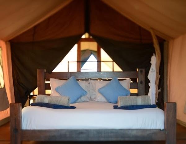 glamping in  australia tent