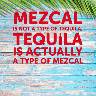 A Mexican Fact SenorFrogs Mezcal Tequila