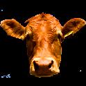 CowCam logo