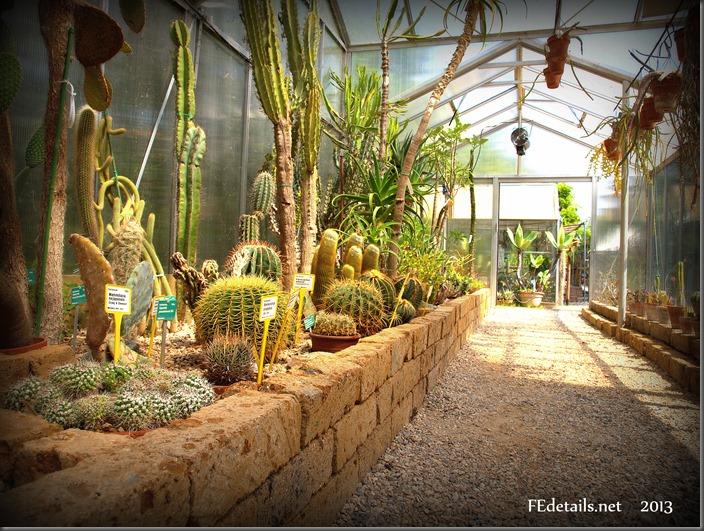 Orto Botanico dell'università di Ferrara foto3 - Botanical Garden of the University of Ferrara photo3
