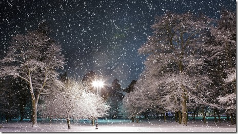 poze desktop iarna