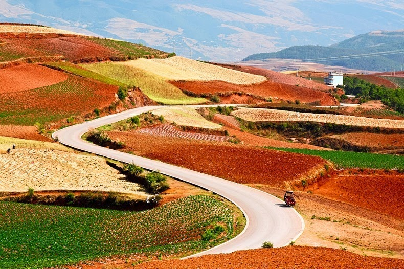 dongchuan-red-soil-13