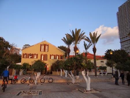 29. Universitate Tel Aviv.JPG