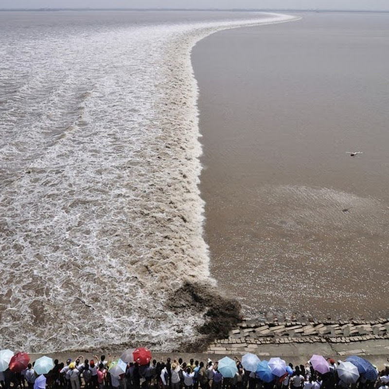 Tidal Bore: When Rivers Flow Against The Current