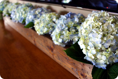trough with hydrangeas