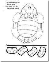 tortuga patas