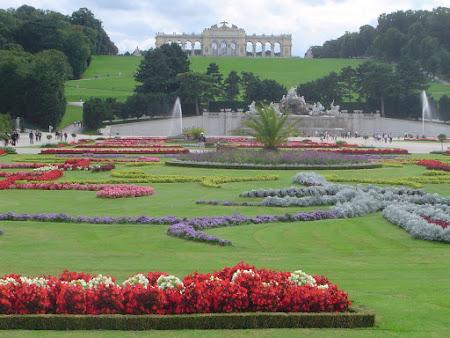 Obiective turistice Viena: Gradina Schonbrunn