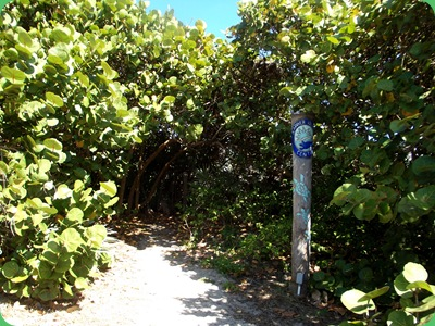 Barrier Island Center 037