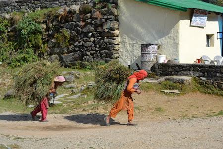 Viata de zi cu zi in India
