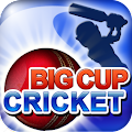 Game Big Cup Cricket Premium apk for kindle fire
