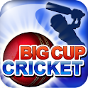 Big Cup Cricket Premium logo