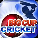 Big Cup Cricket Premium logo