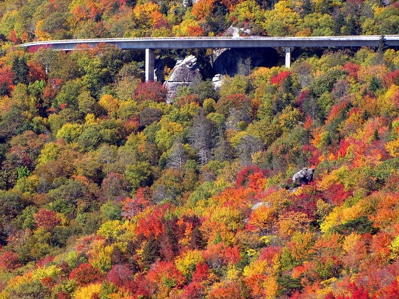 linn-cove-viaduct-12