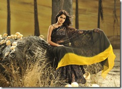Genelia Hot in Black Saree from Naa Ishtam Movie