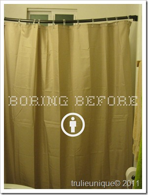 shower curtain, redo shower curtain, inexpensive shower curtain