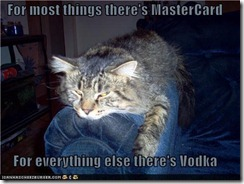 funny-pictures-for-most-things-theres-mastercard-for-everything-else-theres-vodka