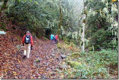 6835 Barranco Andén-Cueva Corcho(Barranco Andén)