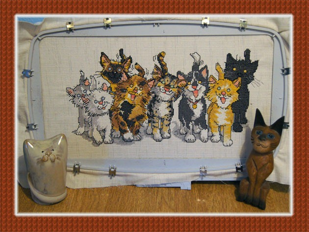 5D Cross Stitcher, CATS