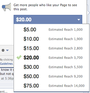 pay facebook for promotion