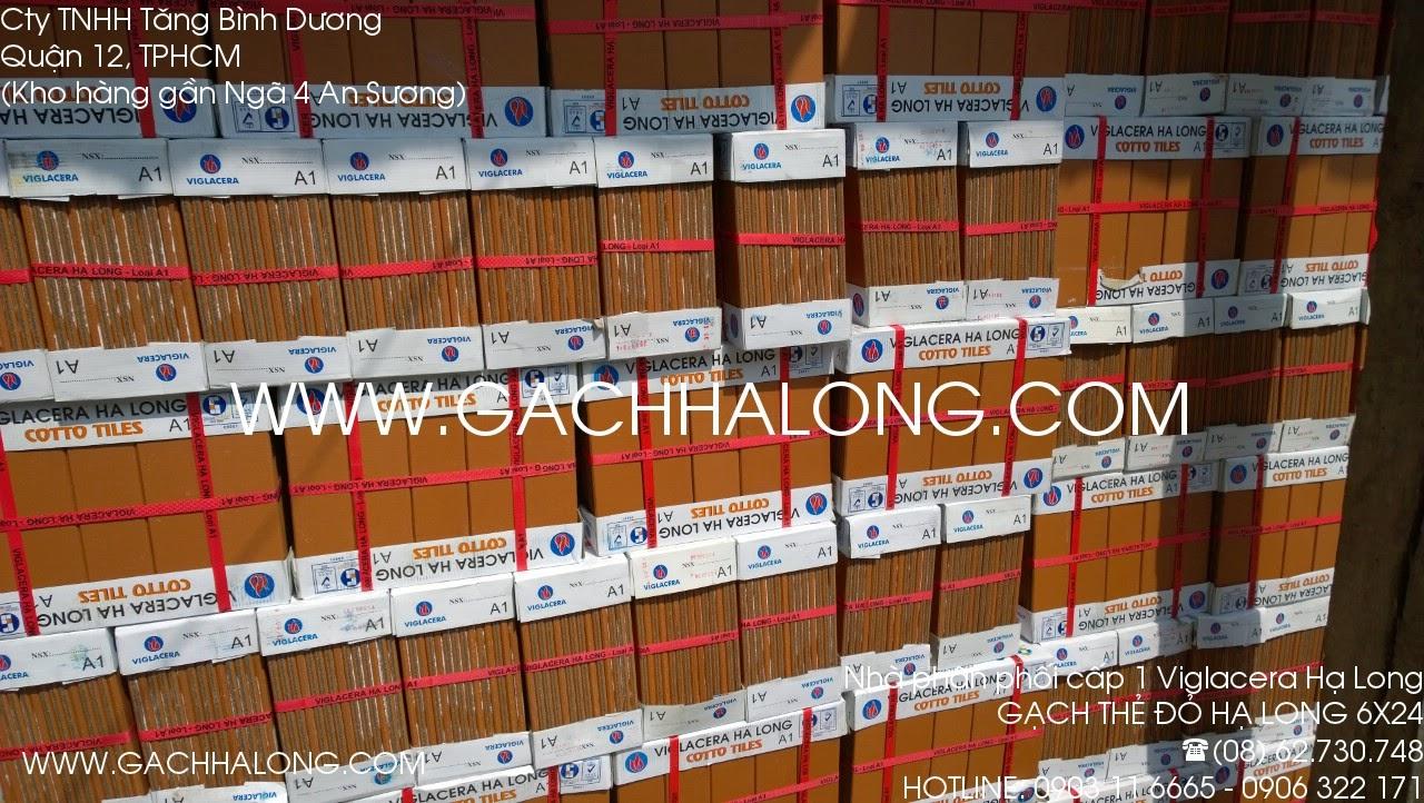 Gạch thẻ đỏ Viglacera Hạ Long 6x24