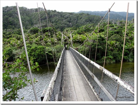 Swing bridge across the Kohaihai river on the Heaphy Track.