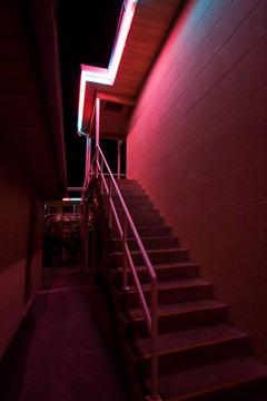 Neons-of-Florida---Sea-Jay-Motel-7