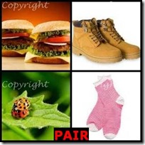 PAIR- 4 Pics 1 Word Answers 3 Letters