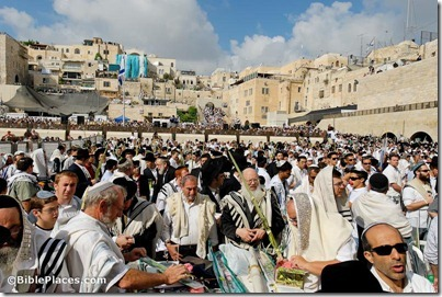 Men praying at Western Wall during Sukkot, tb100906912