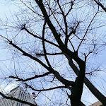 2005-03-14 001.JPG