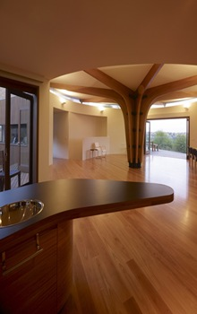 estructura-de-madera-casa-moderna