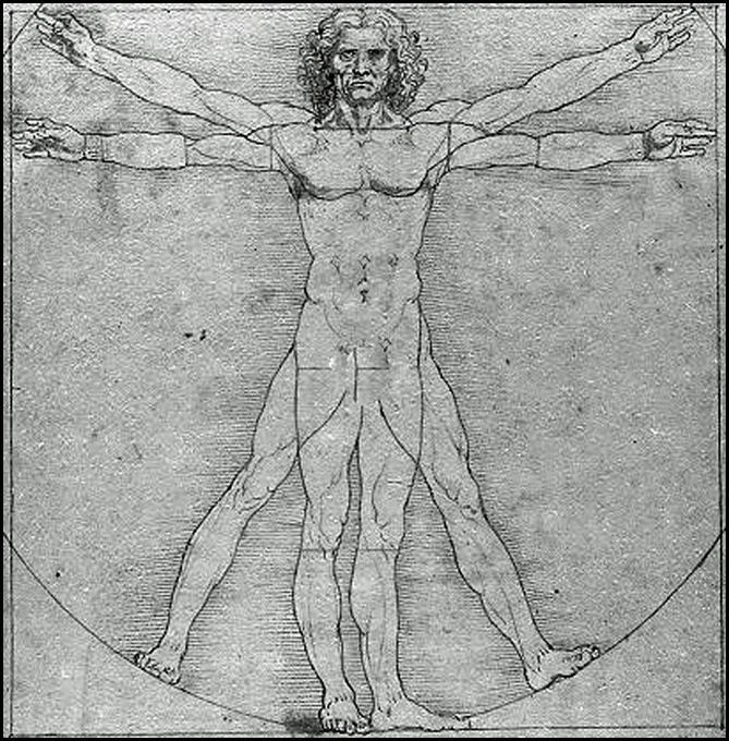 Image result for vitruvian man -Leonardo