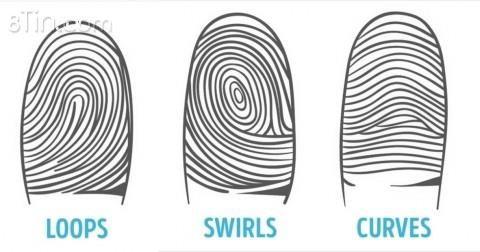 Có một nghiên cứu khoa học về dấu vân tay được gọi