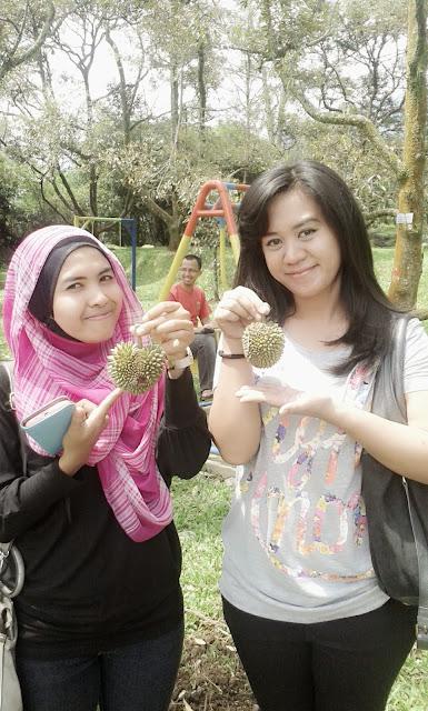 kebun durian warso bogor