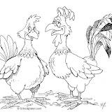 gallo-y-gallina-1.jpg