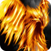Fiery Feathers Live WP