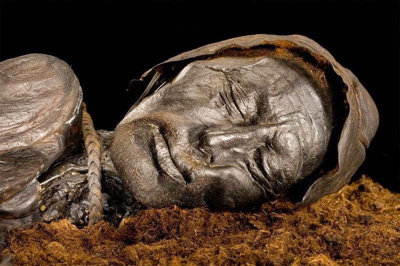 Image result for tollund man