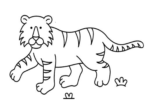 Dibujo De Tigre Para Colorear